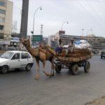 По улицам Пакистана
